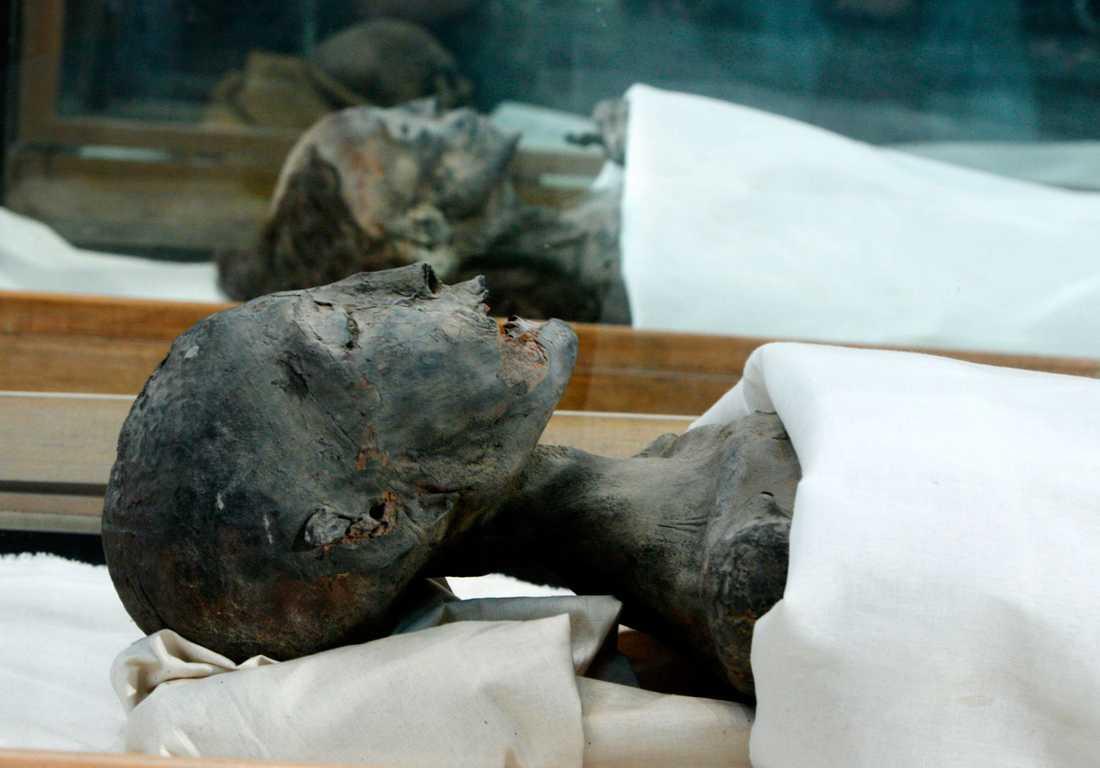 Drottning Kiya, en annan av farao Akhenatons hustrur.