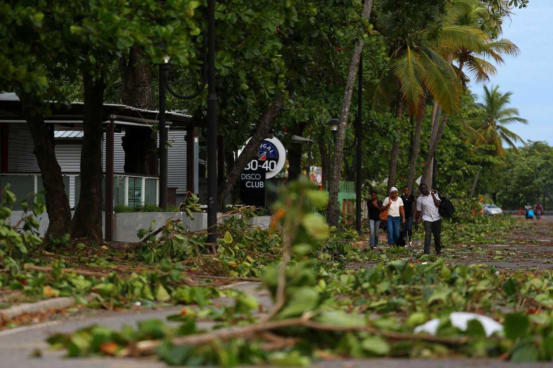 Träd och bråte ligger på gatorna på i Puerto Plata på Dominikanska republiken.