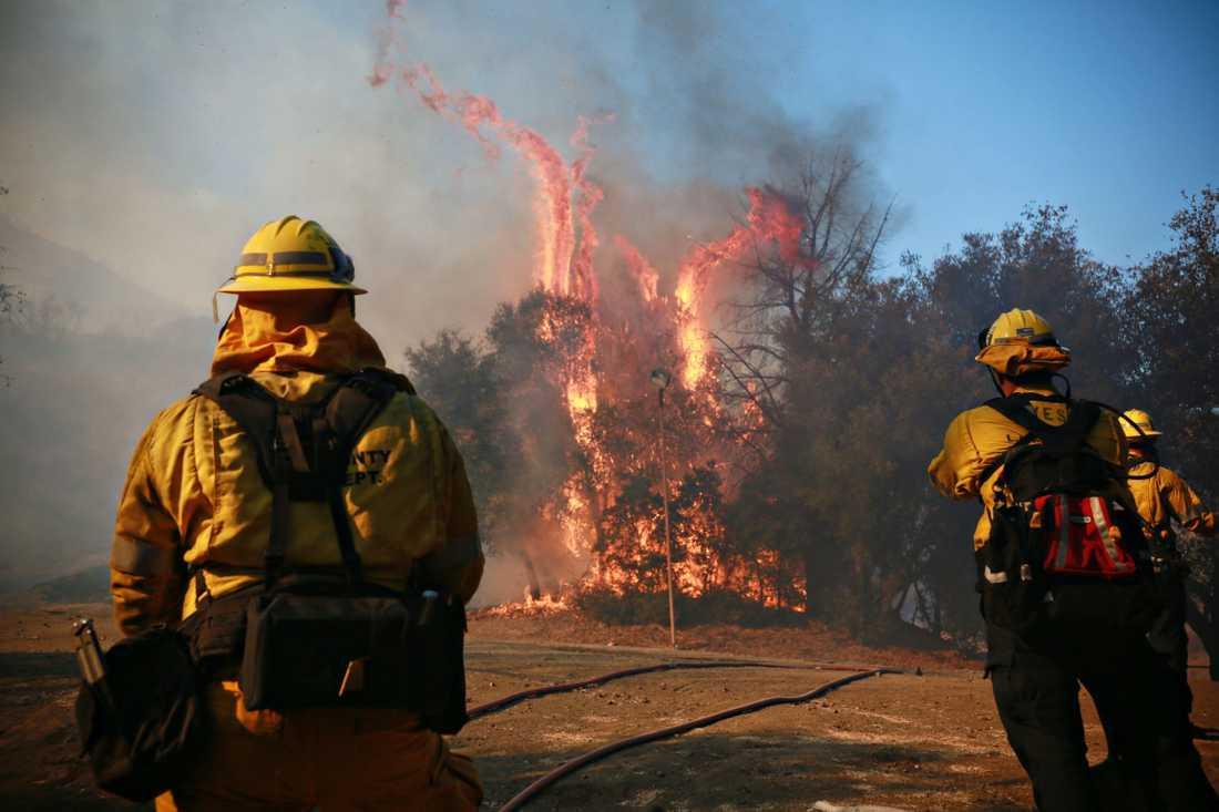 Dödssiffran stiger efter skogsbränderna i Kalifornien.