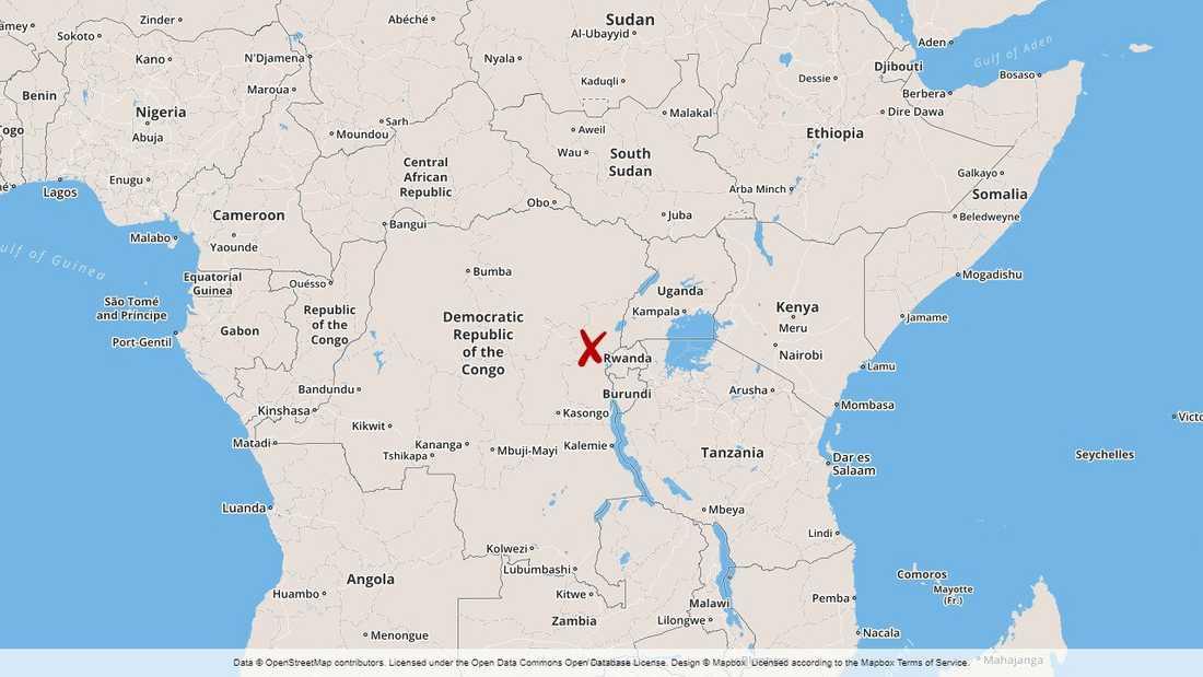 Den rwandiske rebelledaren Sylvestre Mudacumura har dödats i östra Kongo-Kinshasa.