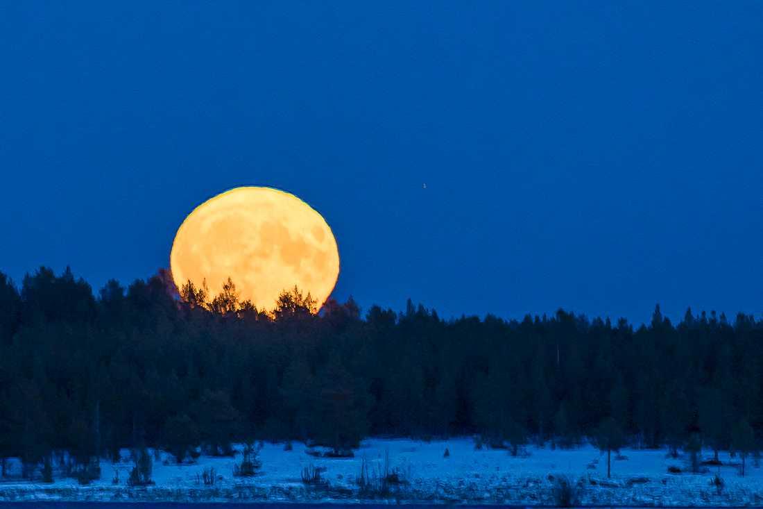 Här är en bild på supermånen från Långnäsudden utanför Skellefteå.