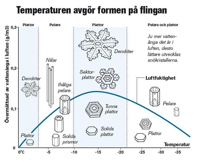 Temperaturen avgör formen på flingan (Klicka för större bild)