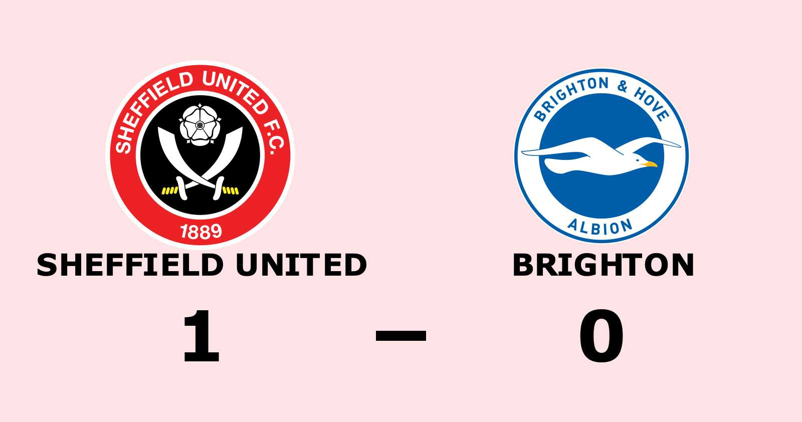 Efterlängtad seger för Sheffield United - bröt förlustsviten mot Brighton