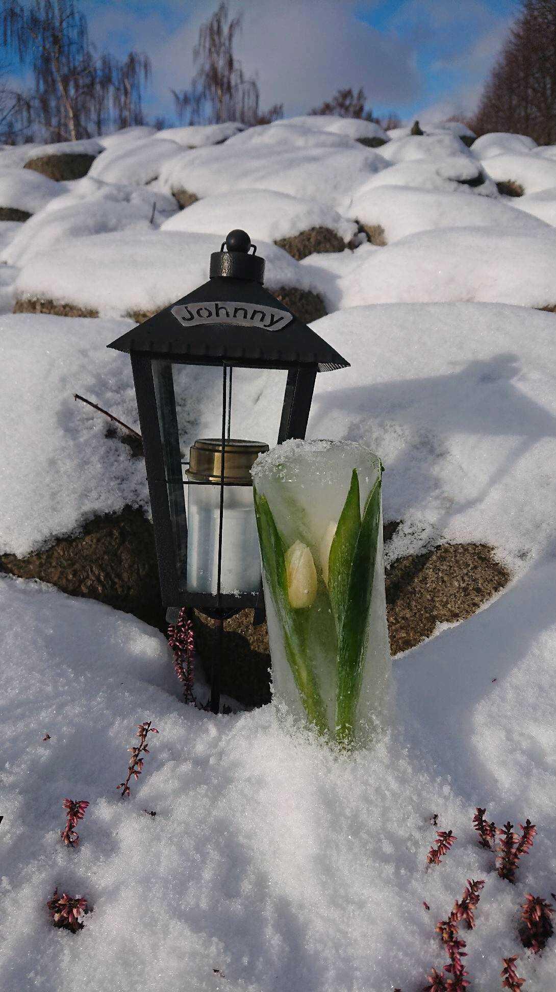 Fiffiga blomknepet till graven.