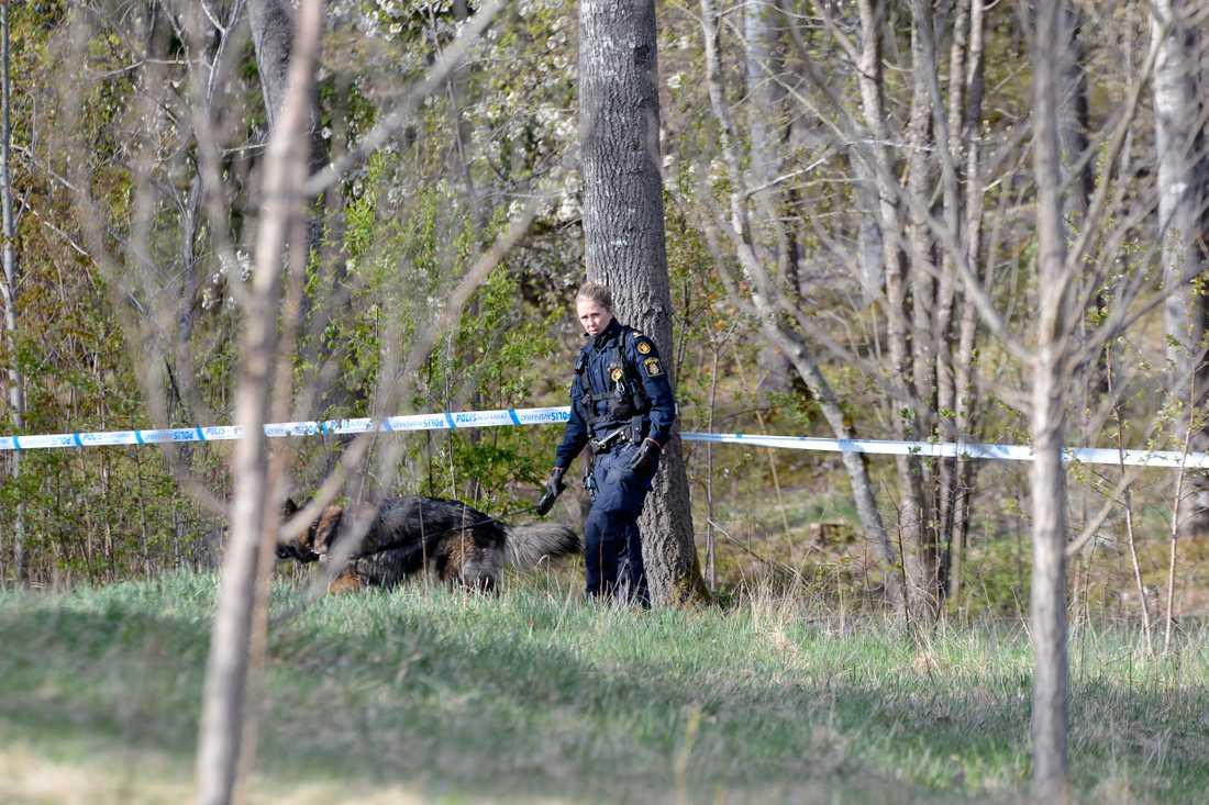 Strax före åtta på lördagsmorgonen larmades polisen till Märsta. I närheten av en skola hade en död kvinna hittats.