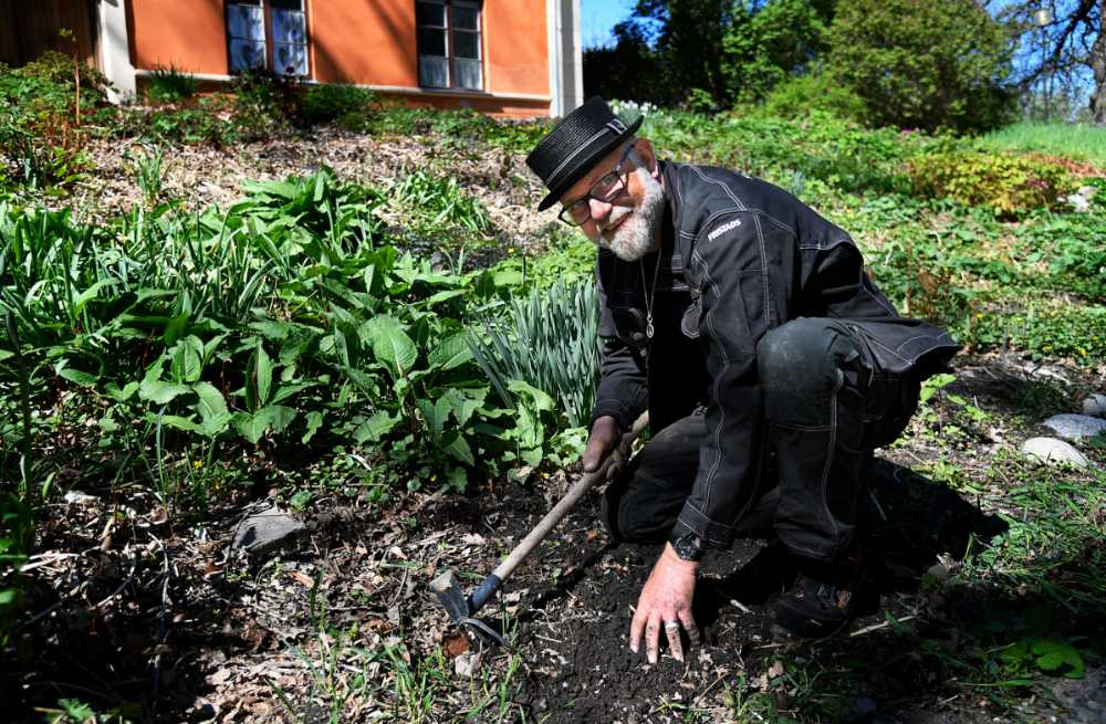 – Ta ogräset innan det går i frö, säger Bosse Rappne.