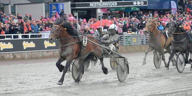 Tangen Haap och Björn Karlsson skrällde i Elitkampen på Solvalla.