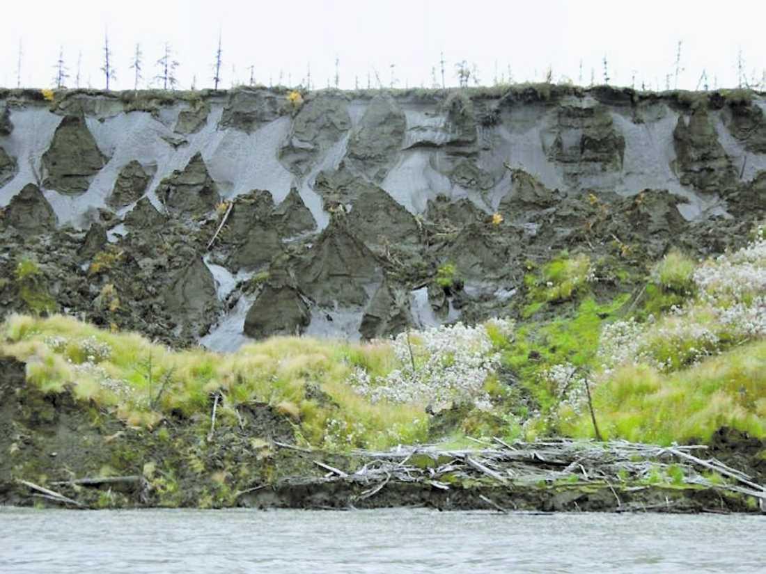 har redan börjaT Den ryske forskaren Sergej Zimovs bild visar jordskred vid en flod i Jakutien.