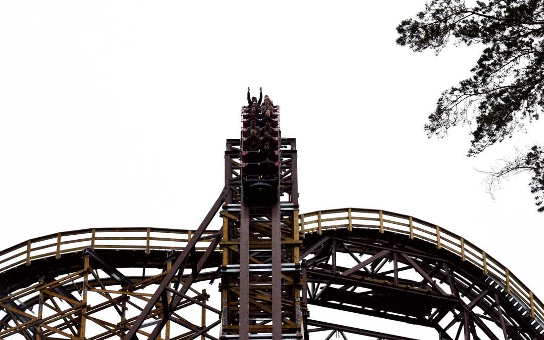 Wildfire på Kolmårdens djurpark. Arkivbild.