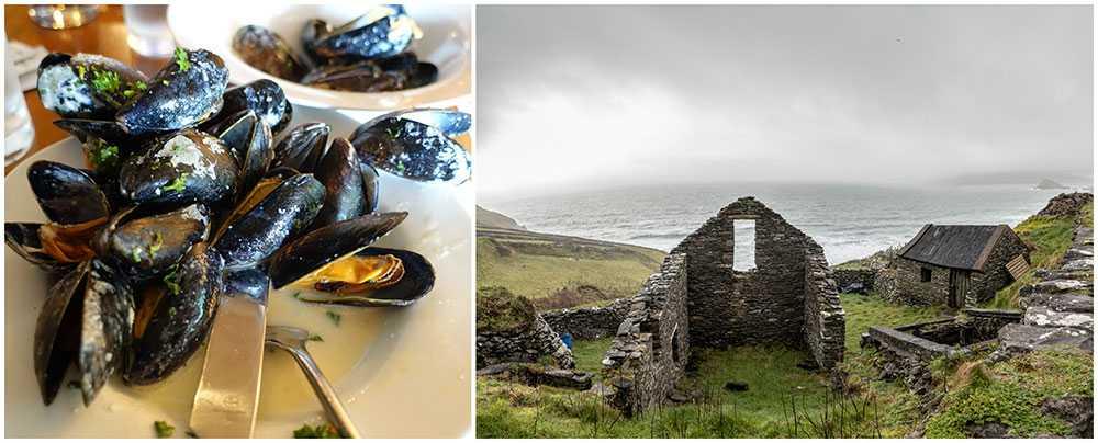 Njut av dramatiska landskap och skaldjur på halvön Dingle.