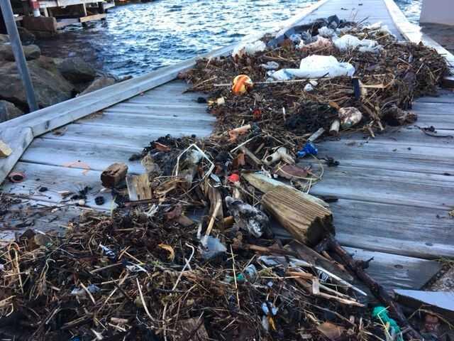 Plast på Bohuskusten.
