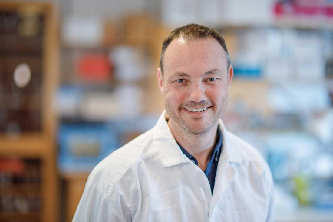 Niklas Arnberg, professor i virologi vid Umeå universitet.