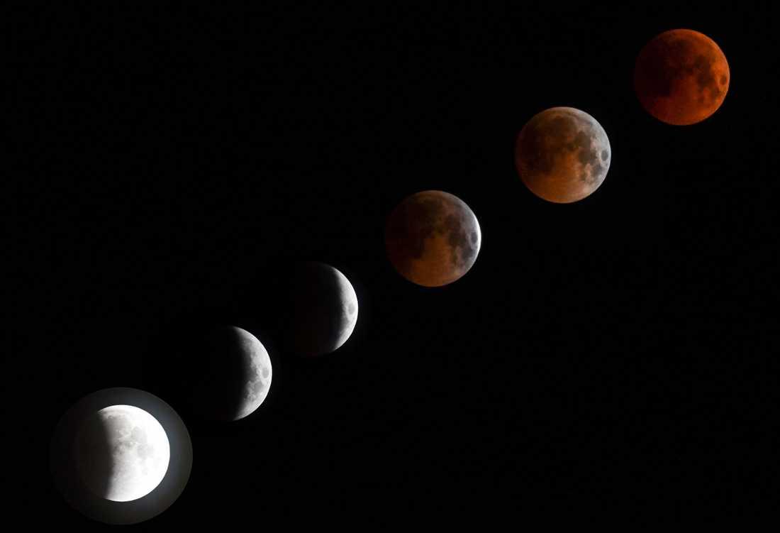 En kombination av sex foton visar hela förloppet av månförmörkelsen.