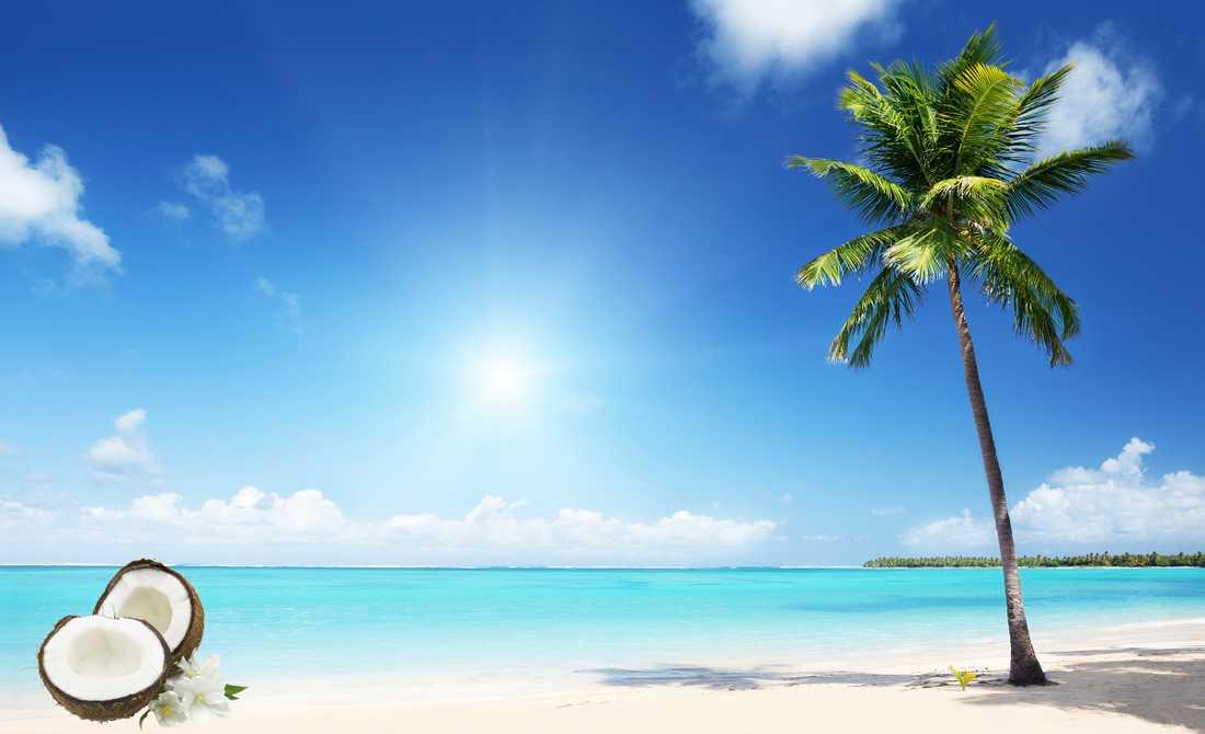 Så länge kokosen    inte blivit kemiskt   processad finns det    nyttiga fettet kvar.