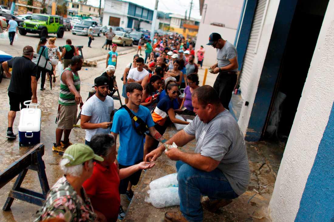 Långa köer för att köpa is efter orkanen Maria i Arecibo, Puerto Rico.
