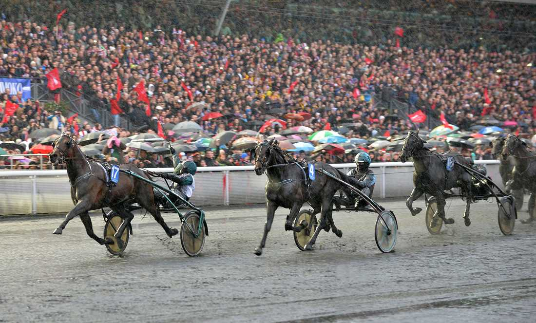 Här vinner Maharajah Prix d'Amérique 2014. Läge för ny svenskeger i år?