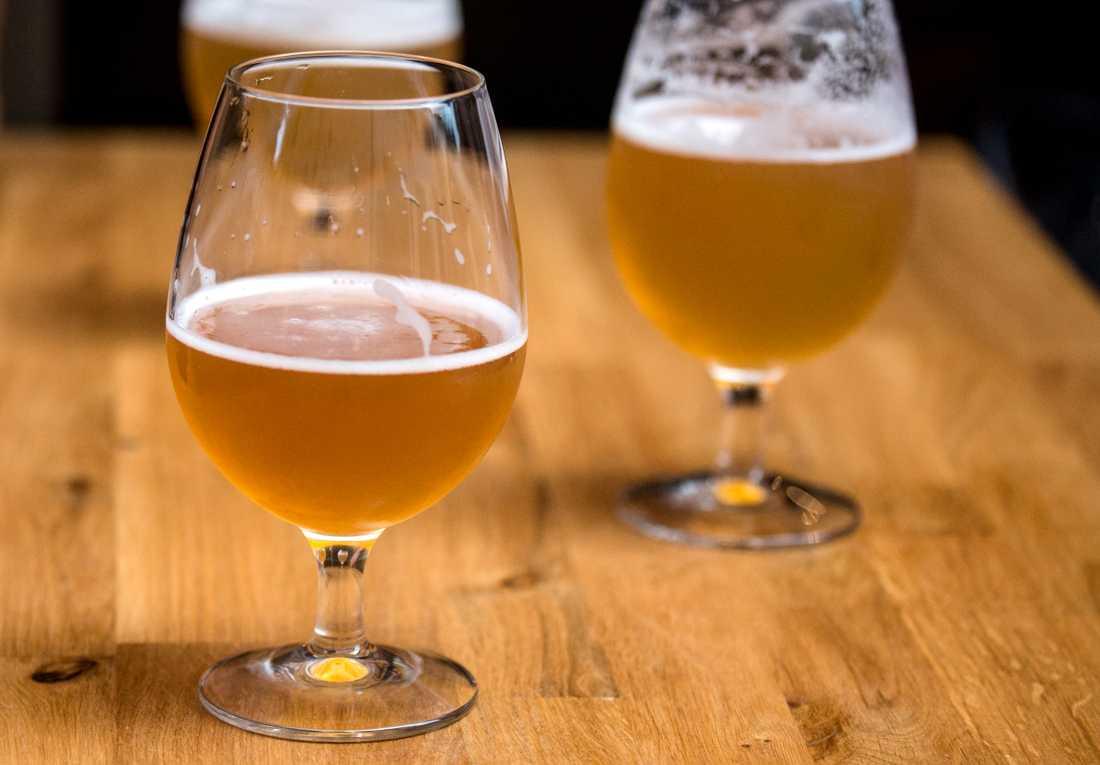 Forskarna vill använd gamla tillverkningsmetoder och kanske även framställa öl för försäljning. Arkivbild.