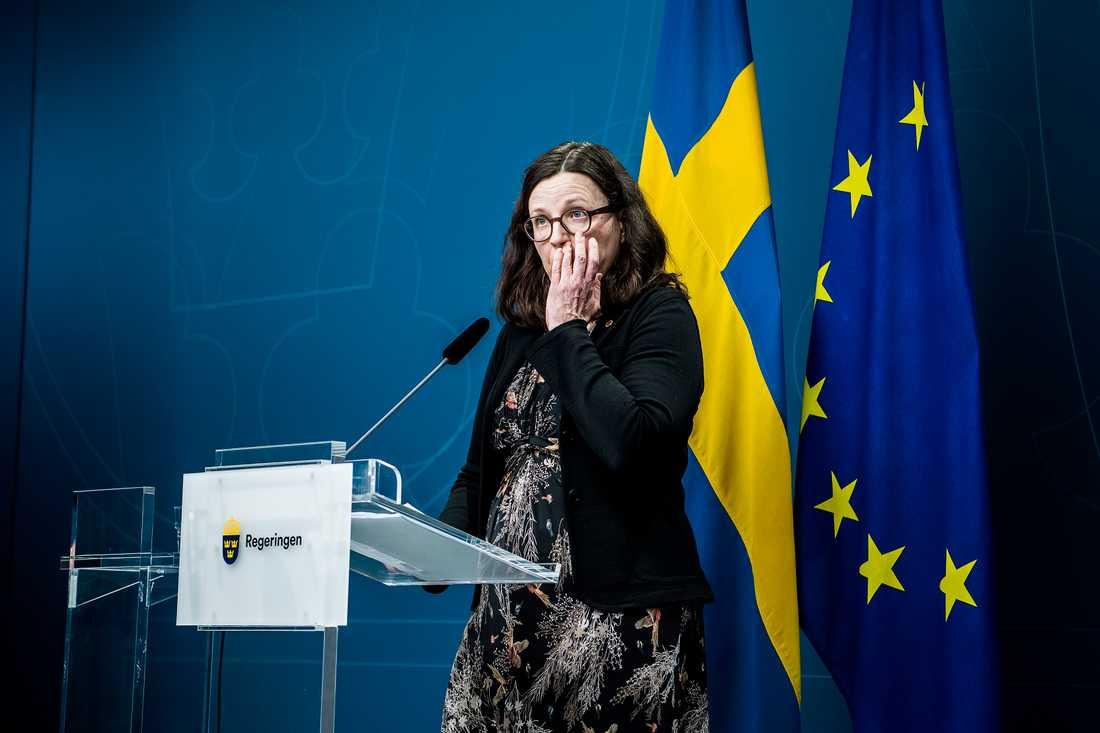 Skolan, segregationen och framförallt skolans likvärdighet för alla elever är uppe på tapeten igen. Anna Ekström har fått en ny utredning på sitt bord.