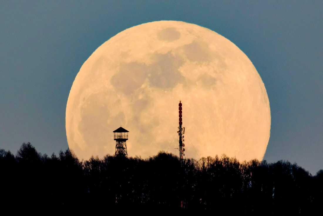 USA vill tillbaka till månen. Arkivbild.