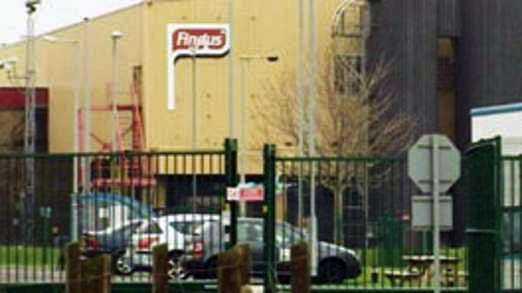 Icas lasagne tillverkas i samma fabrik i England som tillverkar Findus produkter - med fel kött.