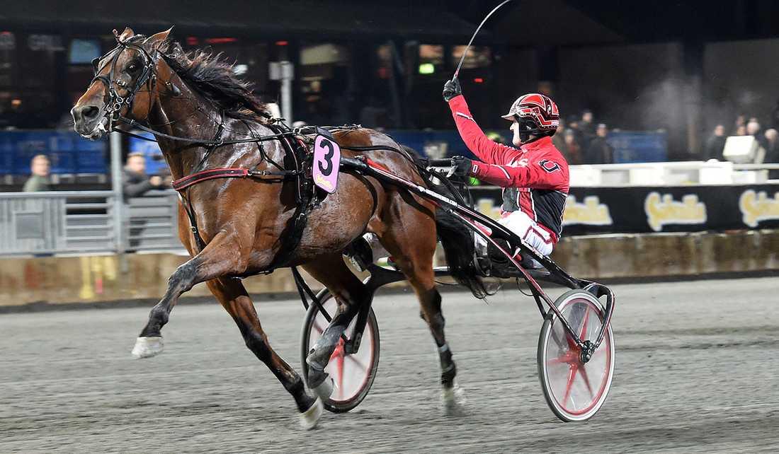 Cyber Lane och Johan Untersteiner vid lördagens V75-seger i Solvalla Grand Prix.