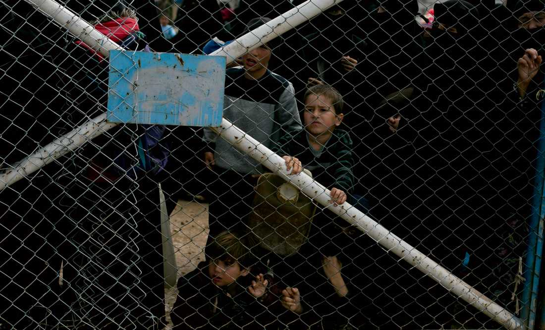 På bilden syns barn som tittar genom stängslet till sektionen för utländska familjer i al-Hol-lägret i Syrien. Personerna på bilden har ingen koppling till artikeln. Arkivbild.