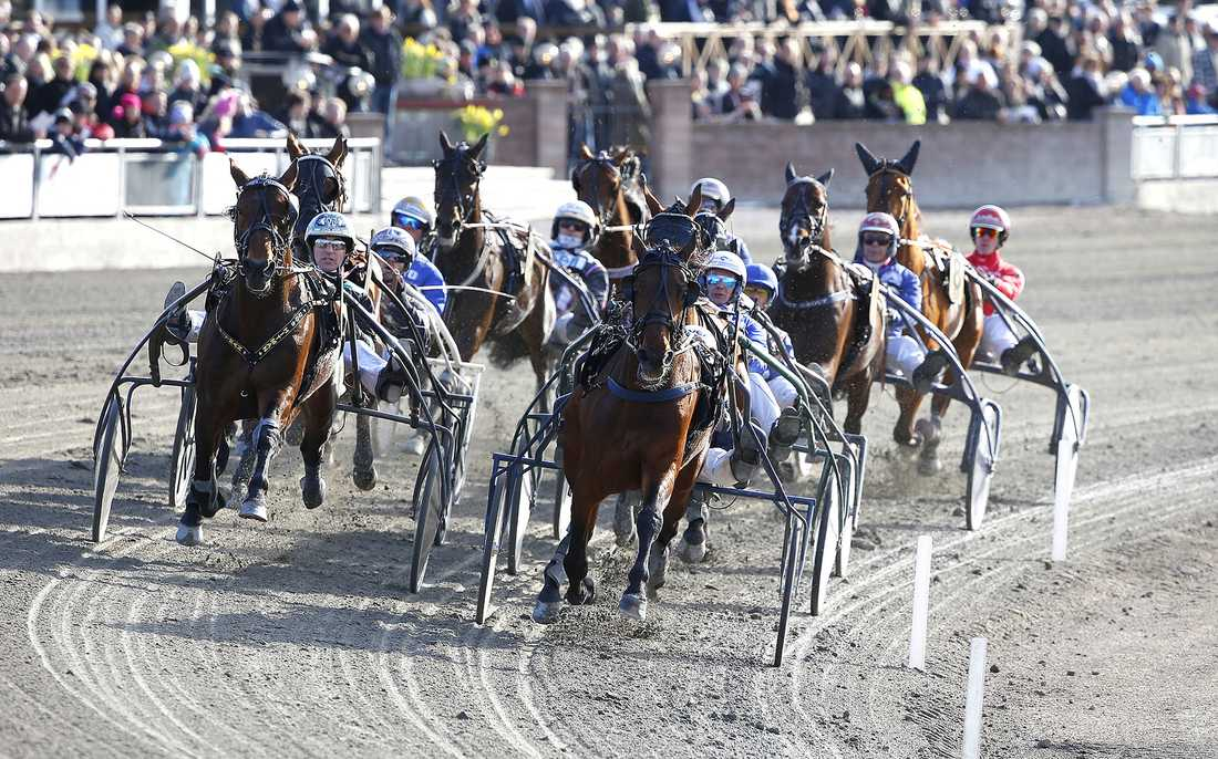 Söndagens tvåa, Volstead, är en av de aktuella hästarna.