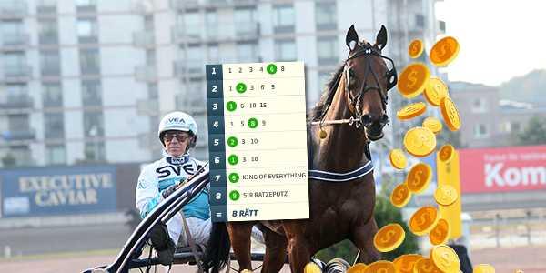 Xanthis Coktail är en av hästarna som tippas i kväll.