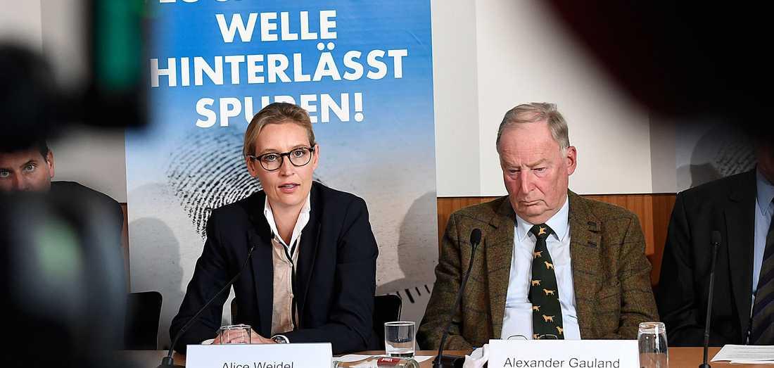 Alice Weidel och Alexander Gauland, partiledare för tyska AfD.