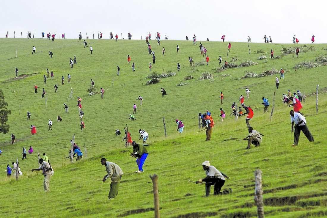 slagfält Krigare från kalenjin- och kisiistammarna rör sig över kullen, beväpnade med pilar och bågar. Urgamla fejder om land och gränser ligger bakom striderna i Transmaradistriktet, där ett 20-tal människor har slaktats med pil och båge.