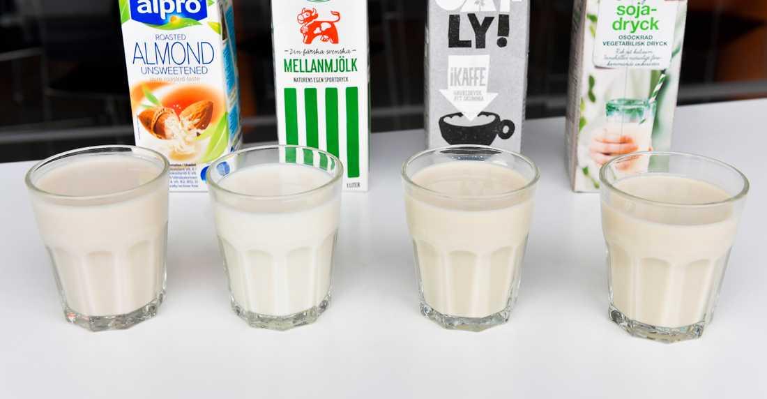 Kan barn dricka vegetabiliska produkter istället för vanlig mjölk? Livsmedelverkets nutritionist reder ut.