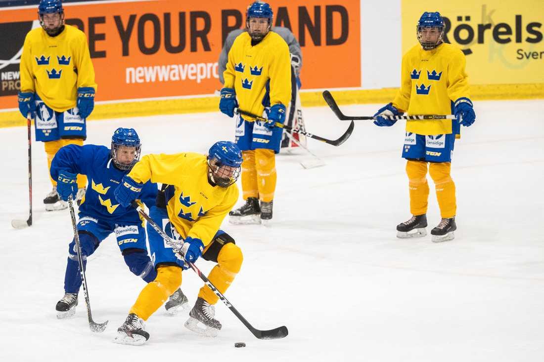 Damkronorna hade träningsläger i Falun i november.