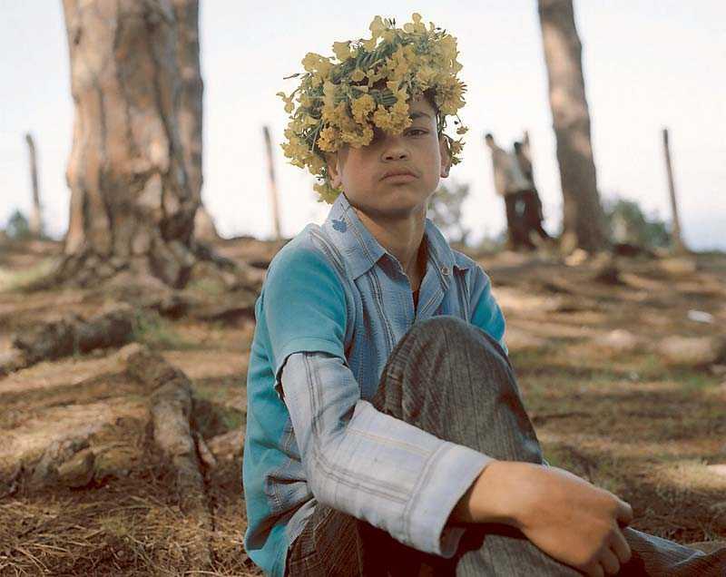 """""""Iris Tingitana"""", Yto Barrada, 2006–2009, serie med färgfotografier och fototapet (här något beskuren)."""