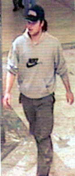 Drygt två veckor efter Anna Lindhs död grep polisen Mijailo Mijailovic i hans hem i Tullinge. I januari 2004 erkände han att han mördat Sveriges utrikesminister.