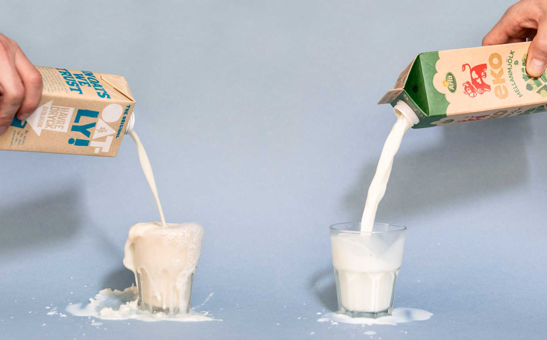 Havredryck eller vanlig mjölk?