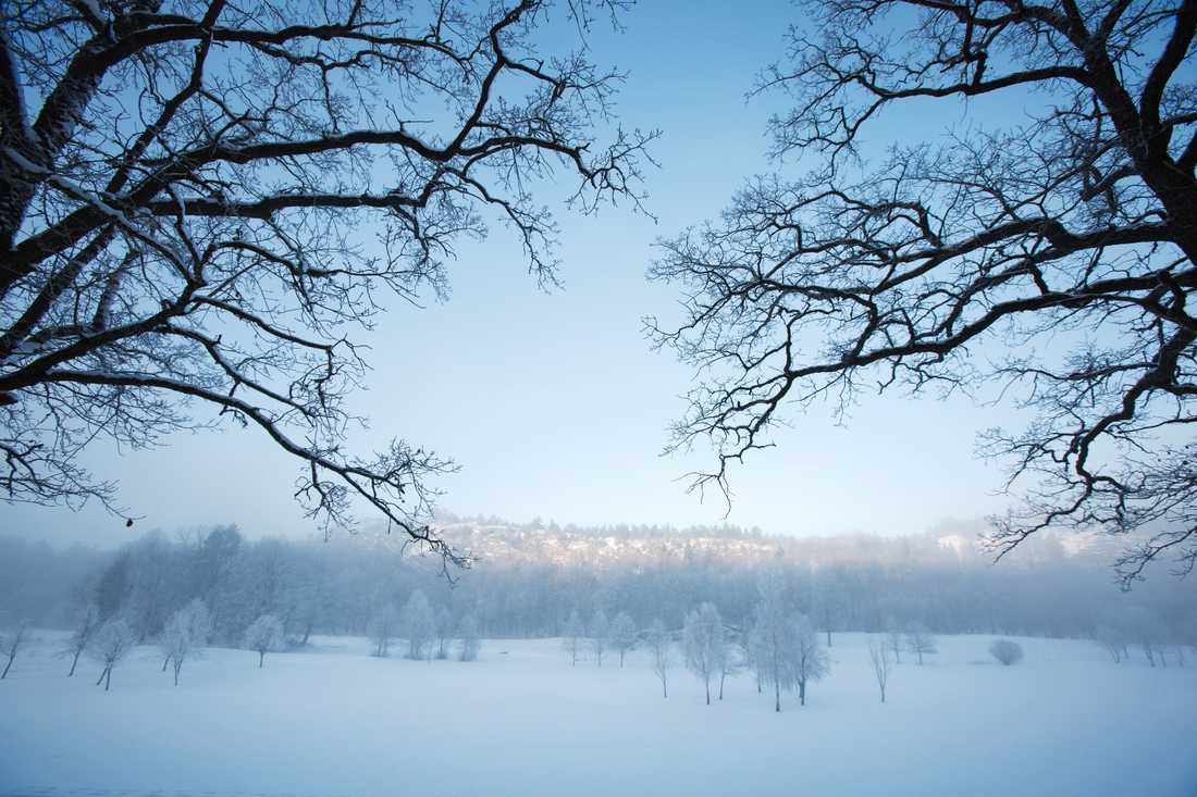 Snötäckt landskap på Öland – men knappast fåk. Arkivbild.