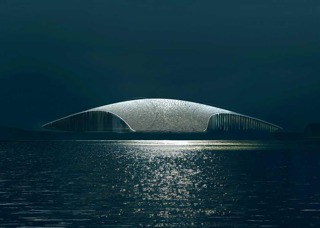 The Whale ska hylla valarna som migrerar utanför ön.