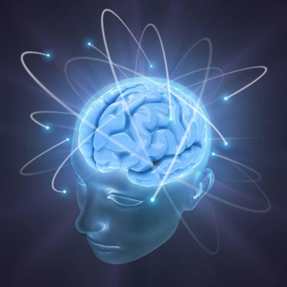 Dagens hjärnor – ett virrvarr av information.