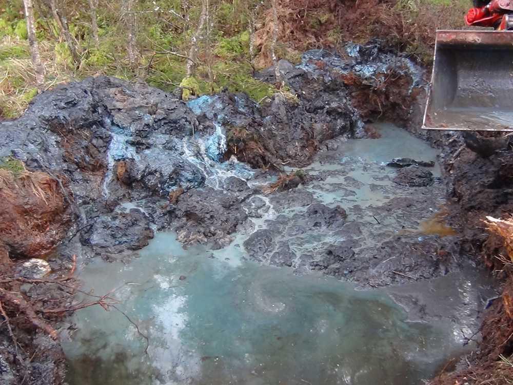 Dumpade gifttunnor i Skönna mosse i Örkelljunga har visat sig innehålla cyanid.