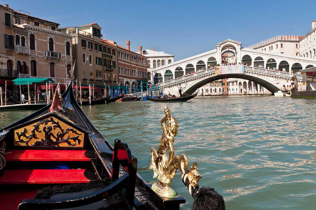 Rialtobron över Canal Grande är ett av Venedigs mest kända landmärken.