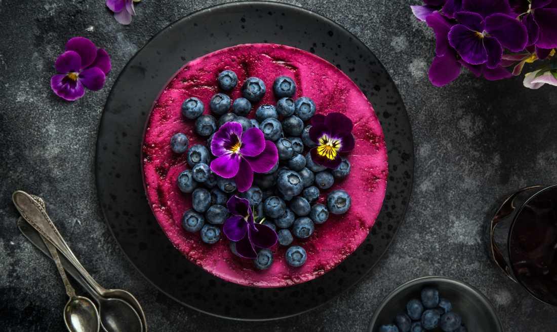 Bjud på vegansk blåbärscheesecake.