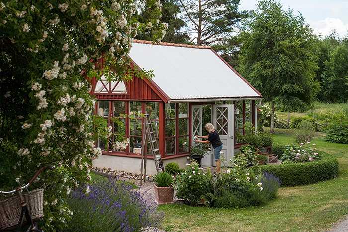 Växthuset är byggt av lösvirke och gamla fönster, och stommen är sedan målad i samma röda kulör som övriga byggnader på tomten.