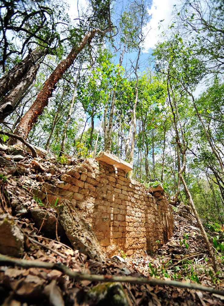 Forskarna hoppas att staden ska kunna bidra till kunskapen om Mayakulturen samt förklara rikets mystiska kollaps.