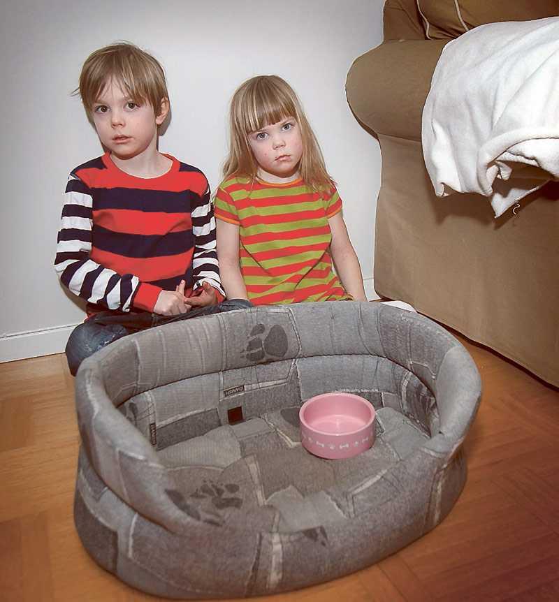 Saknar sina fyrfota vänner Hugo, 6, och Selma, 5, hoppas att den som vet vad som hänt med deras pudlar Ebba och Smilla hör av sig snart.