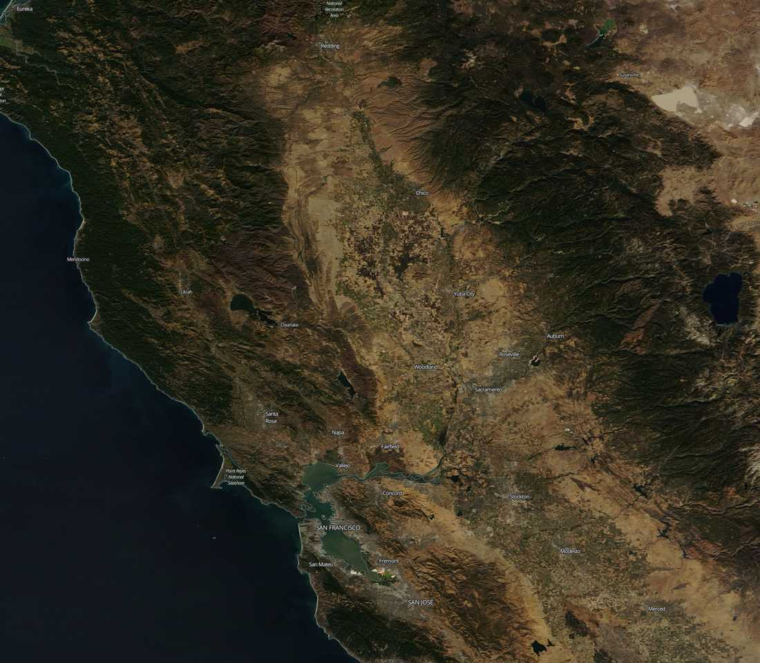Bränderna i Chico, Californien, 7 november