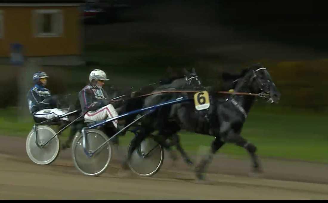 Ulf Ohlsson och Lome Annar vinner V75–3 före favoriten Gustav E..